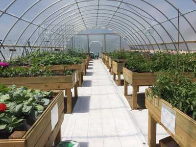 grant county greenhouse